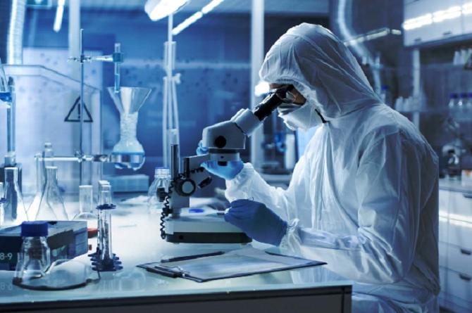 Científicos australianos descubren un medicamento que acaba con el ...
